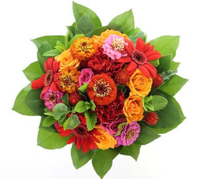 HANAIMOはあなたの「伝えたい」を届ける花屋です。